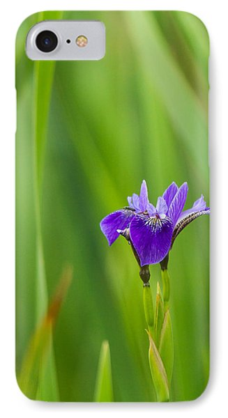Summer Flower IPhone Case