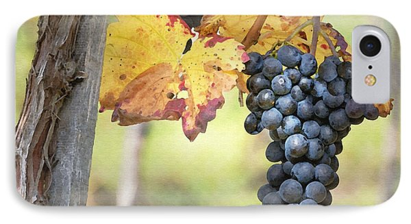 Summer Grapes Phone Case by Sharon Foster