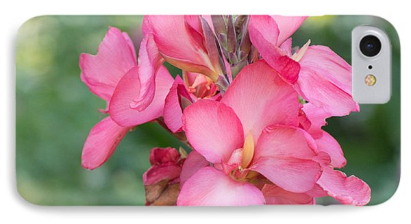 IPhone Case featuring the photograph Summer In Color  by Julie Andel