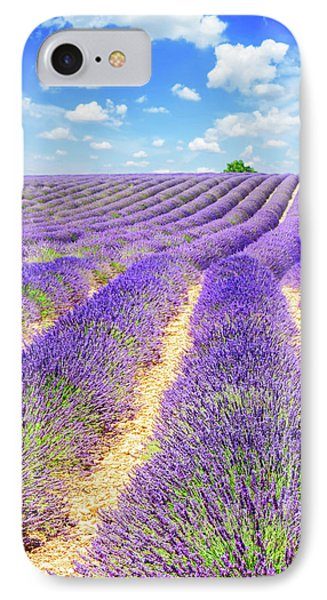 Summer In Provence IPhone Case by Anastasy Yarmolovich