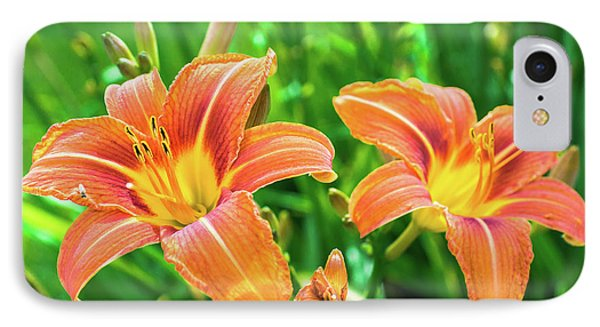 IPhone Case featuring the photograph Summer Jubilation by Bill Pevlor
