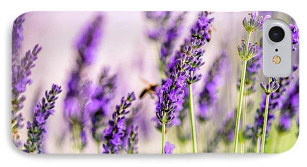Honeybee iPhone 7 Case - Summer Lavender  by Nailia Schwarz