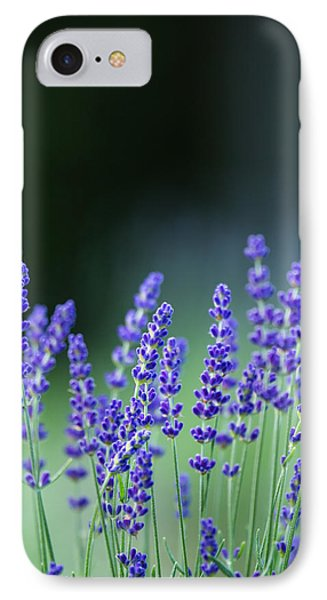 Summer Lavender IPhone Case