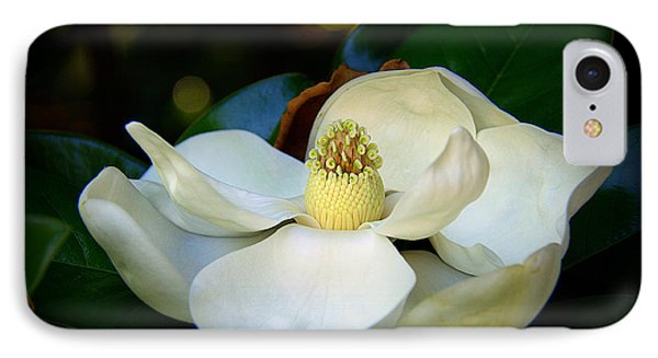 Summer Magnolia IPhone Case