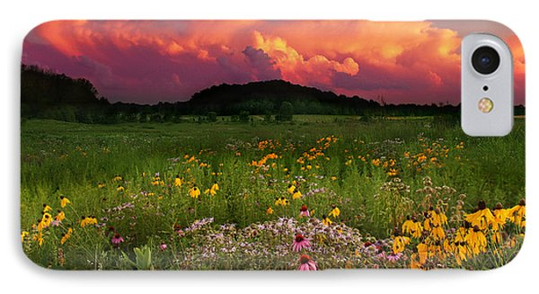 Summer Majesty IPhone Case by Rob Blair