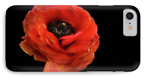 IPhone Case featuring the photograph Summer Orange by Darren Fisher