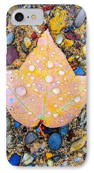 Summer Rain Leaf IPhone Case by Todd Breitling