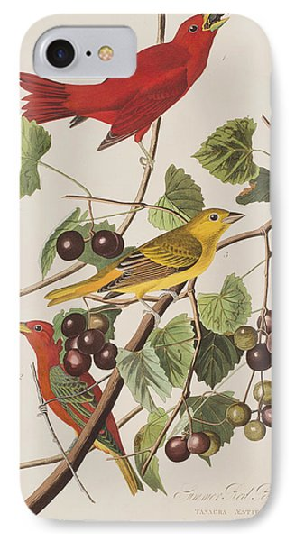 Summer Red Bird IPhone Case by John James Audubon