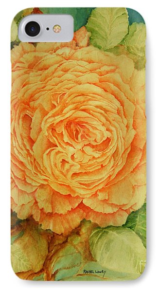 Summer Rose IPhone Case by Rachel Lowry