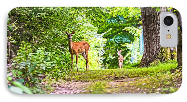 IPhone Case featuring the photograph Summer Stroll by Anthony Baatz