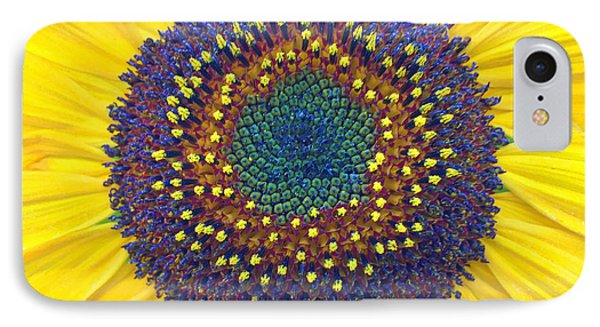 Summer Sunflower IPhone Case by Todd Breitling