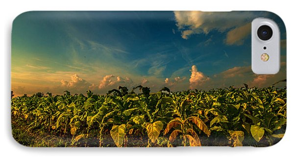 IPhone Case featuring the photograph Summer Tobacco  by John Harding