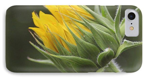 Summer's Promise - Sunflower IPhone Case