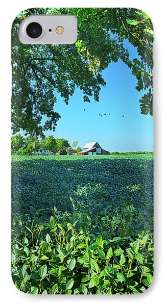 Summertime Blues IPhone Case by Phil Koch