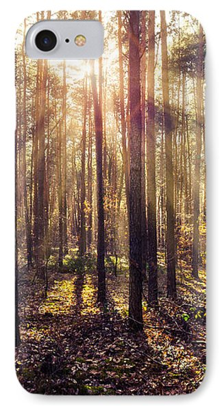 Sun Beams In The Autumn Forest IPhone Case by Dmytro Korol