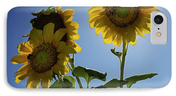 IPhone Case featuring the photograph Sun Flowers by Brian Jones