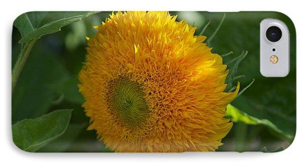 Sun IPhone Case by Joseph Yarbrough