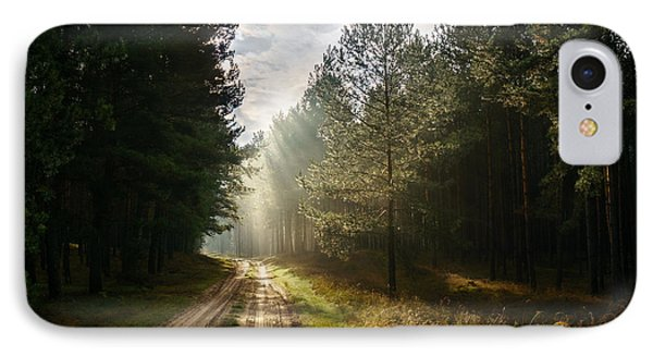 IPhone Case featuring the photograph Sun Light At Pine Forest by Dmytro Korol