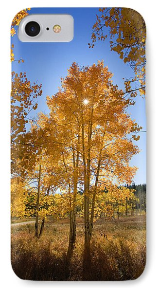 Sun Through Aspens IPhone Case by Ron Dahlquist - Printscapes