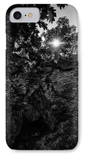 Sun Through The Trees IPhone Case