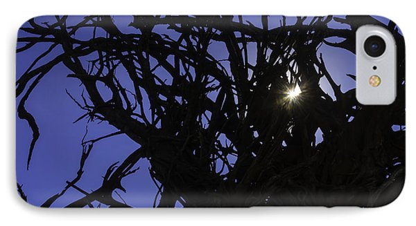 Sun Through Tree Roots IPhone Case by Garry Gay