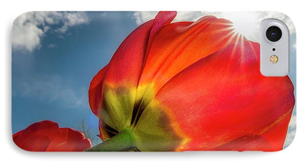 IPhone 7 Case featuring the photograph Sunbeams And Tulips by Adam Romanowicz