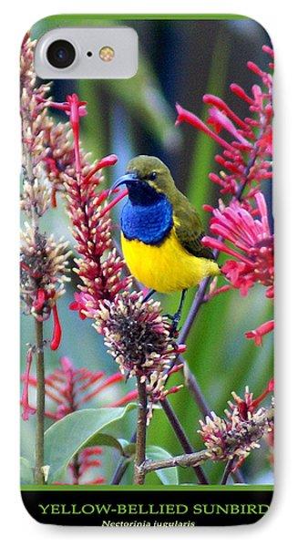 Sunbird Phone Case by Holly Kempe