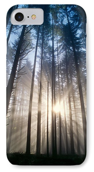 Sunburst In The Forest Phone Case by Greg Vaughn - Printscapes