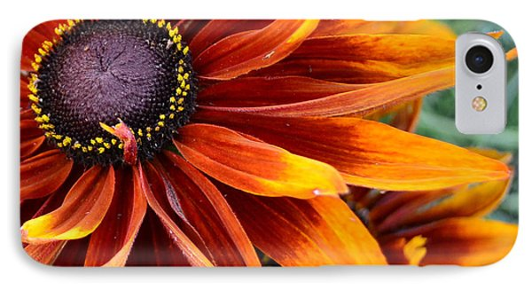 IPhone Case featuring the photograph Sunburst by Larry Bishop