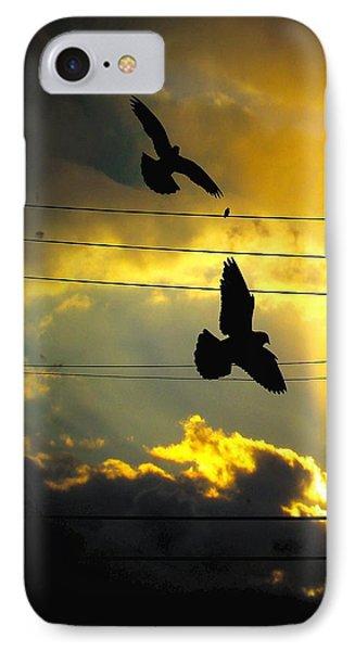Sunburst Sky Blackbirds IPhone Case by Gothicrow Images