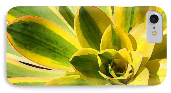 Sunburst Succulent Close-up 2 Phone Case by Amy Vangsgard