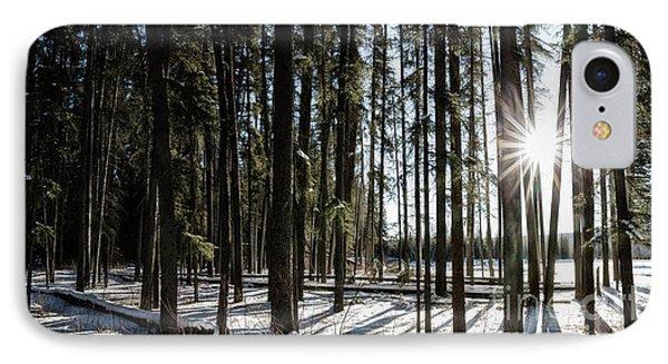 Sundial Forest IPhone Case by Brad Allen Fine Art
