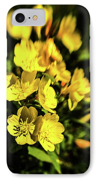 IPhone Case featuring the photograph Sundrops by Onyonet  Photo Studios