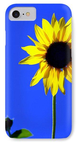 Sunflower 2 Phone Case by Marty Koch