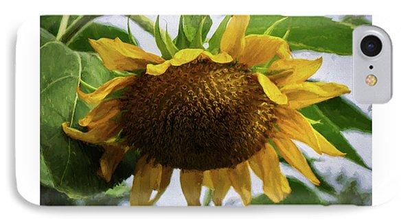 Sunflower Art II IPhone Case