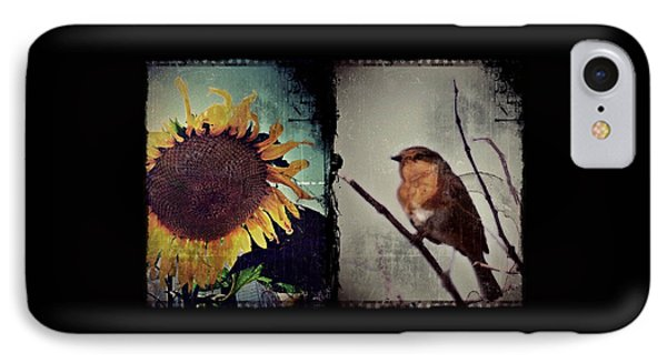 Sunflower Bird Diptych IPhone Case by Patricia Strand