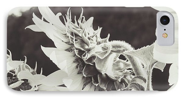 IPhone Case featuring the photograph Sunflower Black And White by Andrea Anderegg