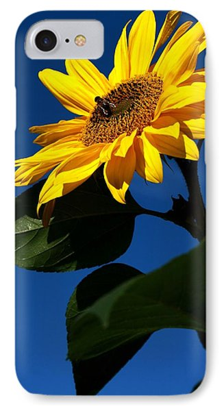 Sunflower Breakfast 1. Just Arrived  IPhone Case