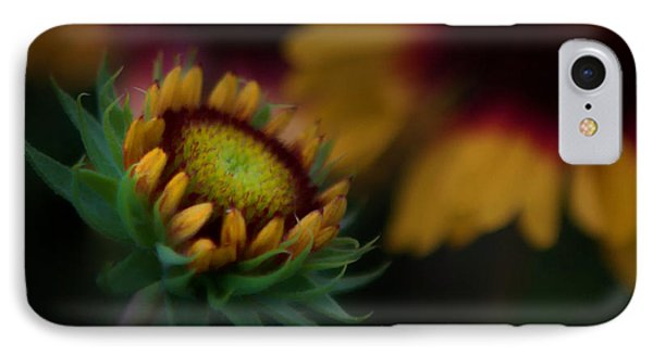 IPhone Case featuring the photograph Sunflower by Cherie Duran
