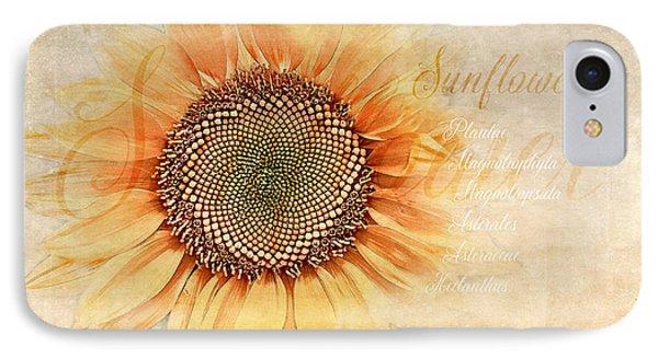 Sunflower Classification IPhone Case