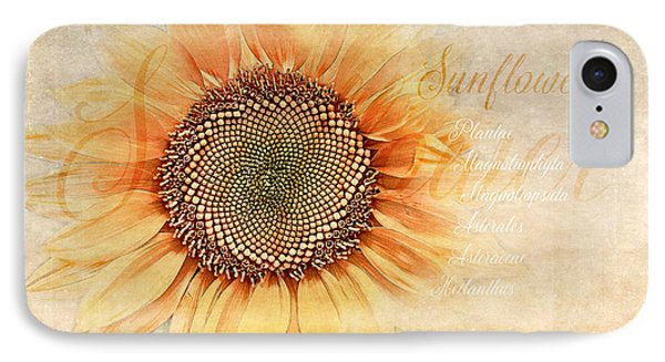 Sunflower Classification IPhone Case by Terry Davis