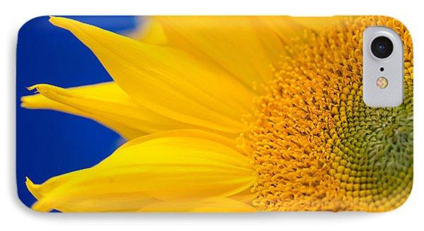Sunflower Detail IPhone Case