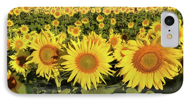 IPhone Case featuring the photograph Sunflower Faces by Ann Bridges