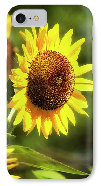 IPhone Case featuring the photograph Sunflower Field by Christina Rollo
