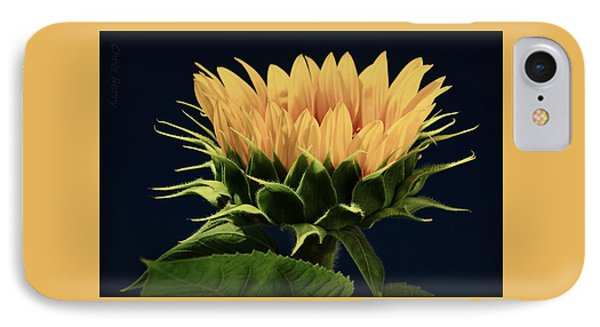 IPhone Case featuring the photograph Sunflower Foliage And Petals by Chris Berry