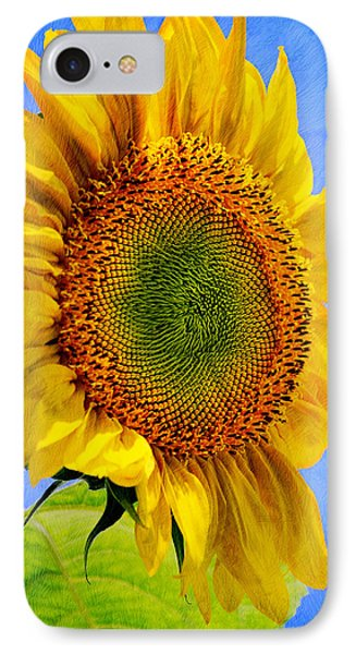 Sunflower Plant IPhone Case by Christina Rollo