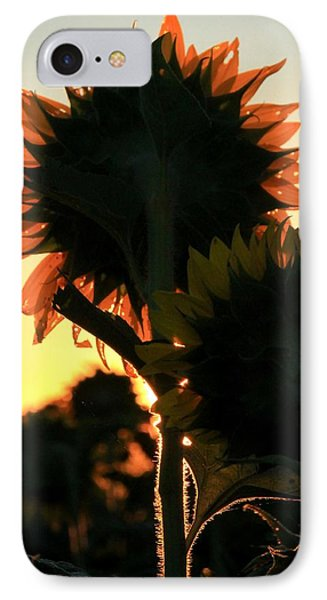 IPhone Case featuring the photograph Sunflower Greeting  by Chris Berry