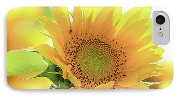 Sunflower In Golden Glow IPhone Case