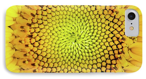Sunflower Large Round Beach Towel Design IPhone Case