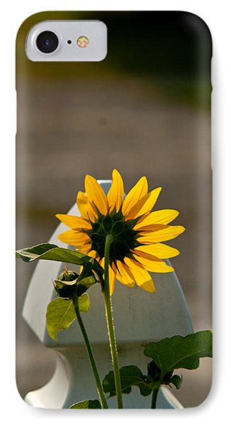Sunflower Morning Phone Case by Douglas Barnett